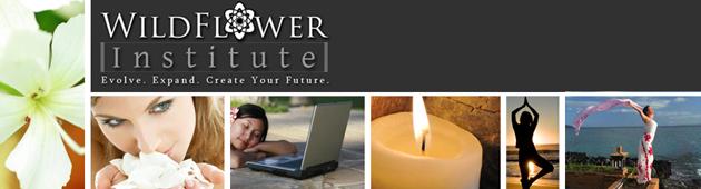 WildFlower Institute